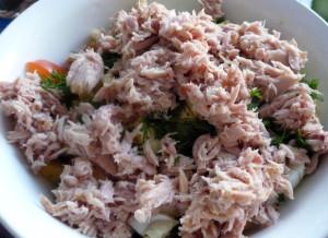tunec-v-salate
