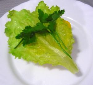 salatny-list