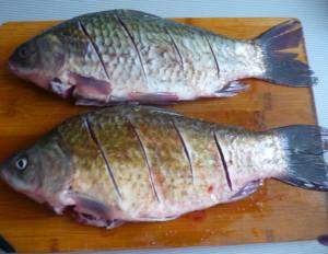 nadsechki-na-rybe