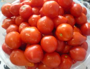 pomidory-dlya-marinovaniya